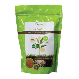 Big Plant 500 g